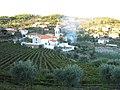 COTAS - panoramio.jpg