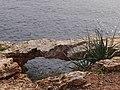 Calvià, Balearic Islands, Spain - panoramio (30).jpg