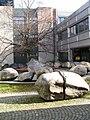 Camesi-EPFL3.jpg