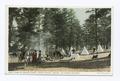 Camp in Tusuyan Forest, Hermit Rim, Grand Canyon, Ariz (NYPL b12647398-74544).tiff