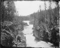 Canyon of the Upper Madison, between Gibbon Fork and the Fire Hole River, Yellowstone. - NARA - 516834.tif