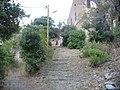 Cap Corse - Granaggiolo-street of steps - panoramio.jpg