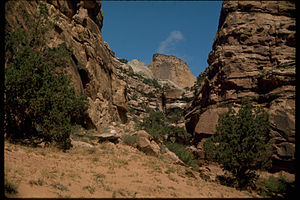 Capitol Reef National Park CARE4486.jpg
