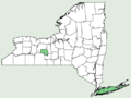 Carex barrattii NY-dist-map.png