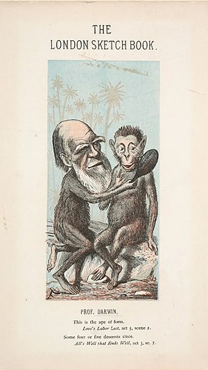 Faustin Betbeder - Charles Darwin by Faustin Betbeder (1874)