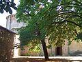 Carrizo de la Ribera - Monasterio de Santa Maria de Carrizo 12.jpg