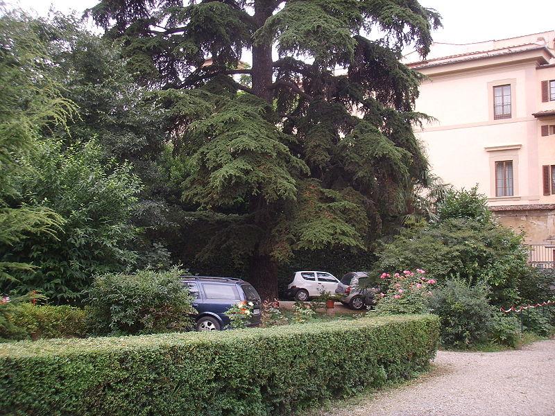 Ficheiro Casino Salviati Giardino 03 Jpg Wikip Dia A