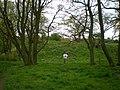 Castle Hill earthwork, Fordhall Farm - geograph.org.uk - 1280320.jpg