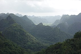 Cat Ba National Park 267.JPG