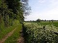 Cawston - geograph.org.uk - 438708.jpg