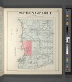 Cayuga County, Right Page (Map of Springport) NYPL3903612.tiff