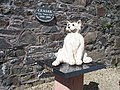 Ceasar, Kirkcudbright's town cat. - geograph.org.uk - 1422608.jpg
