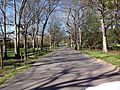 Cedar Creek Pathway.jpg