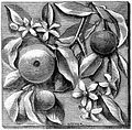 Ceramic Tile with Oranges.jpg