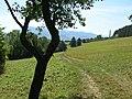 Cesta k samotám nad Gbeľanmi - panoramio.jpg