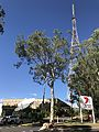 Channel 7 television studios and transmission tower at Mount Coot-tha.jpg