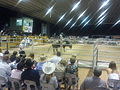 Charters Towers Bull Ride.jpg