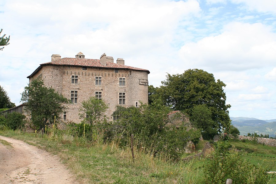 Castle of Maisonseule
