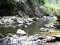 Cheile Turzii-Râul Hășdate-(53).JPG