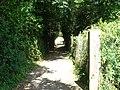 Chemin (14).jpg
