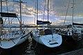 Circolo Nautico NIC Porto di Catania Sicilia Italy Italia - Creative Commons by gnuckx - panoramio - gnuckx (37).jpg