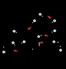 Imagem do circuito misto do autódromo antes da reforma para os Jogos Pan-americanos de 2007.