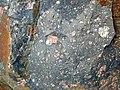 Clast-rich impact pseudotachylite (Sudbury Breccia, Paleoproterozoic, 1.85 Ga; Windy Lake Northwest roadcut, Sudbury Impact Structure, Ontario, Canada) 23 (32795959707).jpg