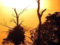Clima de deserto no PARNA.jpg