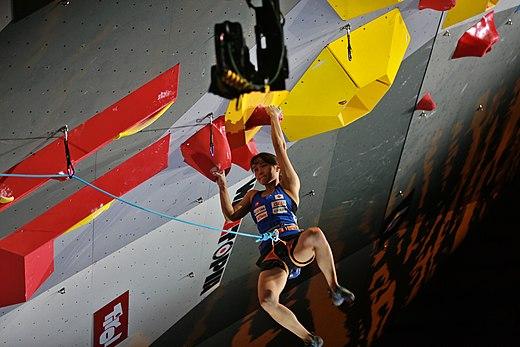 Climbing shoe Wikipedia