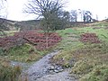 Clwydian Way-Taith Clwyd - geograph.org.uk - 310178.jpg