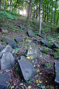 Cmentarz żydowski w Będzinie8.jpg