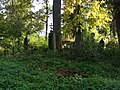 Cmentarz Prawosławny w Suwałkach (57).JPG