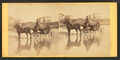Coach on beach, and houses in the distance, from Robert N. Dennis collection of stereoscopic views 2.png