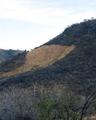 Coamil Sierra de Quila.png