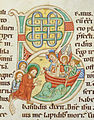 Codex Bodmer 127 102r Detail.jpg