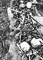 Collecting Remains of the War Dead in Okinawa 02.jpg