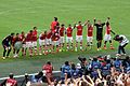Community Shield 60 - Celebrations (14698442567).jpg