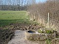 Concrete drinking trough at Old Country Farm - geograph.org.uk - 757046.jpg