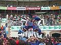 Concurs de Castells 2010 P1310284.JPG