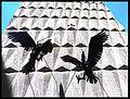 Condores 2.jpg