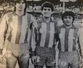Cornaglia, Díaz y Palma.png