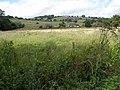 Cottages at Grafton - geograph.org.uk - 529485.jpg