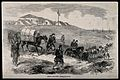 Crimean War, Russia; French ambulances before Sebastopol. Wo Wellcome V0015372.jpg