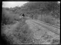 Cruikshank's Tunnel, on the Wairarapa Line between Mangaroa and Upper Hutt, ca 1900 ATLIB 272538.png
