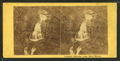Crystal Cascade, near Glen House, by White, Franklin, 1813-1870.png