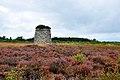 Culloden Battlefield (24745091488).jpg