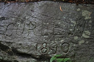 "Sydney artists' camps - ""Curlew 1890"", engraved into the rock. Evidence of the camps can still be seen today"