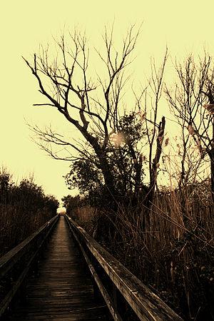 English: Currituck Heritage Park, Corolla, NC