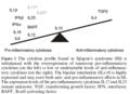 Cytokine profile in Sjogren's syndrome (SS).png