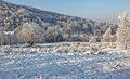 Czerniawa Zdrój, Góry Izerskie - panoramio (2).jpg